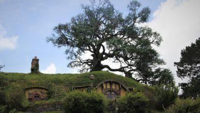 Photo of The Hobbit Quiz