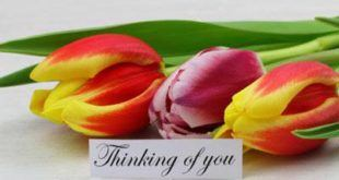 Thinking-of-you-quotes