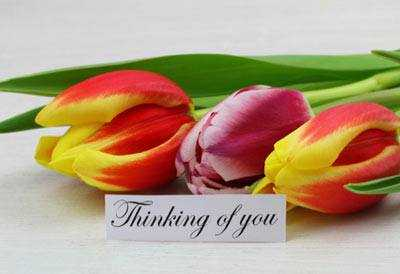 Thinking Of You Quotes All The Happy Thoughts About A Person