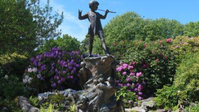 Photo of Peter Pan Quiz
